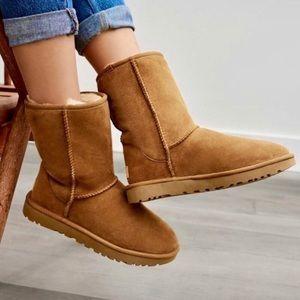 🌲🎁UGG Australia Classic Chestnut boots